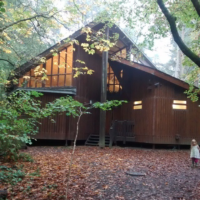 I wish this was my house!!! #HouseInTheWoods