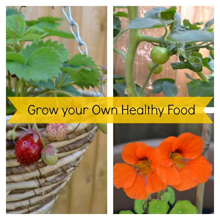 Grow your Own Healthy Food